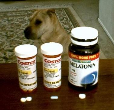 Photo of Piglet with some of her pills